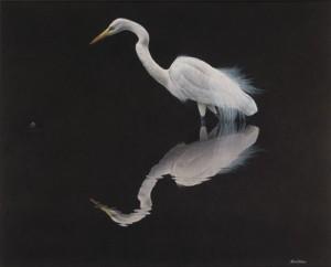 53. 'Egret Reflection' 2005resized