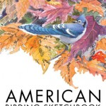 American-sketchbook-cover-inner
