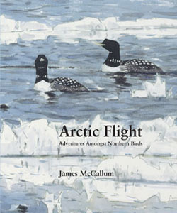 Arctic_flight_cover_300
