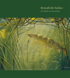 Beneath-the-Surface-cover.300jpg