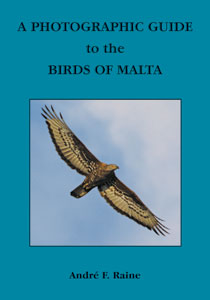 Birds-of-Malta-cove300r