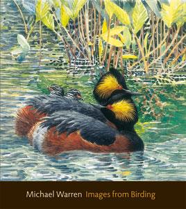 Images-fr-Birding-cove300r