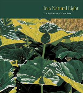 Natural-Light-cover300