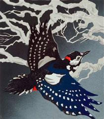 wlp-woodpecker