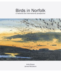 birds-in-norfolk-300